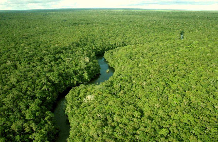 Mineração ilegal é um dos principais problemas da Amazônia